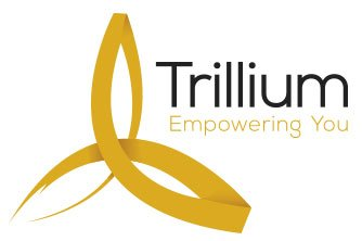 PRESS RELEASE – TRILLIUM TRADING ACADEMY LAUNCHES